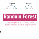 The 2 Most Important Use for Random Forest