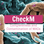 Step by Step: Completeness and Contamination of MAGs