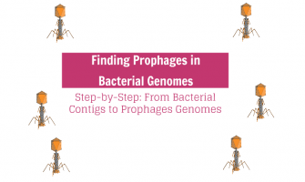 Step-by-Step: Finding Prophages in Bacterial Genomes