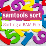 Easy BAM Sort with samtools sort