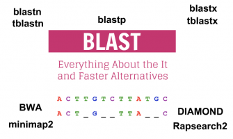 Everything About the NCBI BLAST Aligner and Faster Alternatives