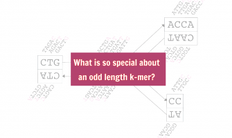 What is so special about an odd length k-mer?