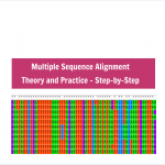 Multiple Sequence Alignment - Theory and Practice - Step-by-Step